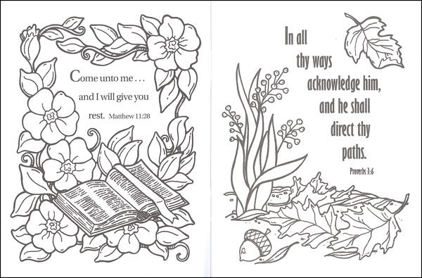 Bible Treasures Coloring Book Christian Light 9780878137060