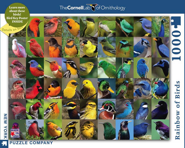 Rainbow of Birds -1000 piece (Cornell Birds)
