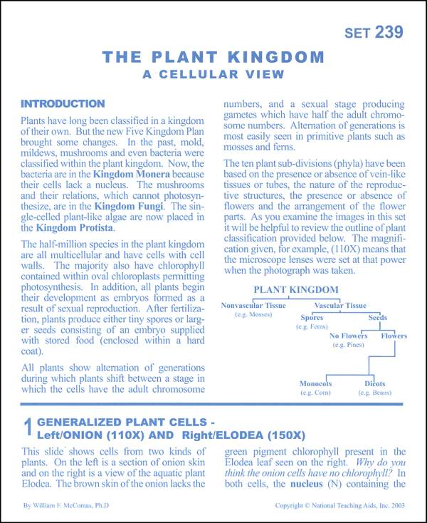 Plant Kingdom Microslide Lesson Set
