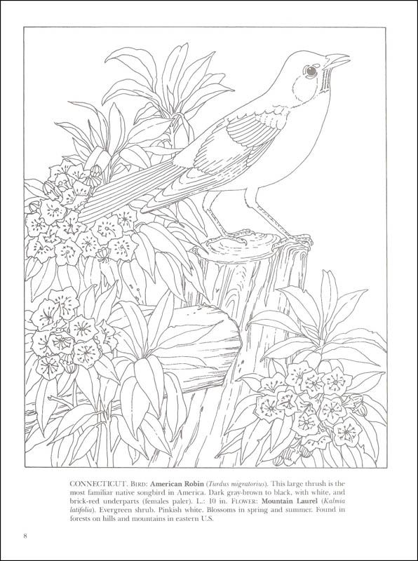 State Birds & Flowers Coloring Book Dover Publications 9780486264561