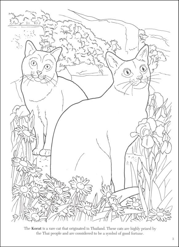 - Cat Lovers Coloring Book Dover Publications 9780486462004