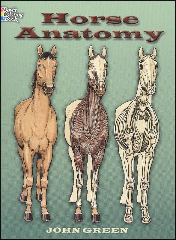 - Horse Anatomy Coloring Book Dover Publications 9780486448138