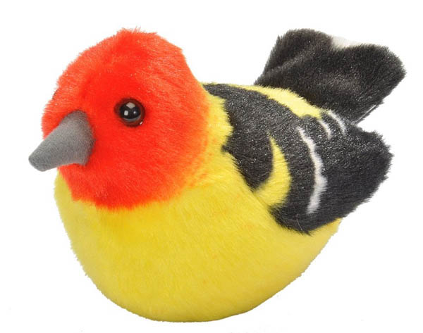Audubon Bird: Western Tanager With Real Bird Call