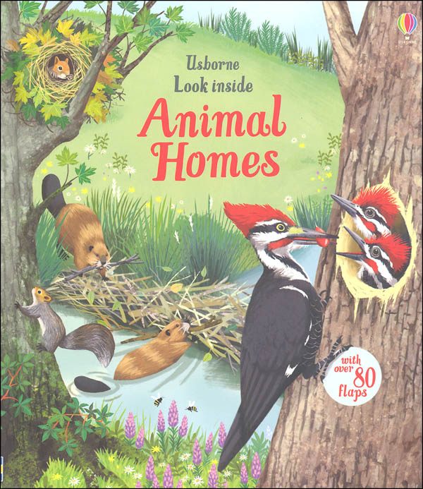 Look Inside Animal Homes (Usborne)