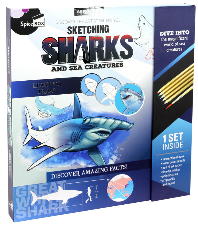 Sketching Sharks and Sea Creatures (Art Studio)