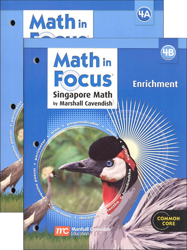 Math in Focus Grade 4 Enrichment A and B Set
