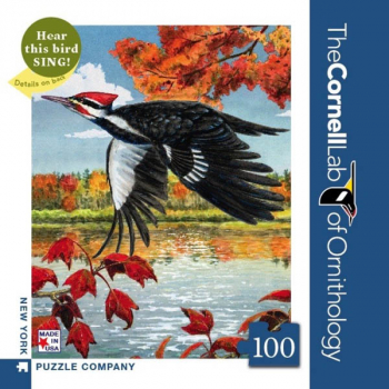 Pileated Woodpecker - 100 piece Mini Puzzle (Cornell Birds)