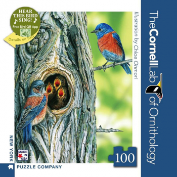 Western Bluebird - 100 piece Mini Puzzle (Cornell Birds)