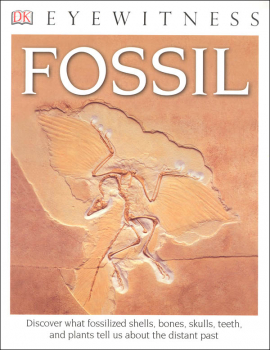 Fossil (Eyewitness Book)