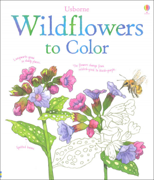Wildflowers to Color