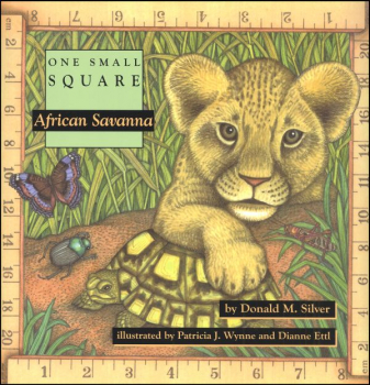 One Small Square: African Savannah