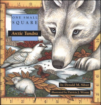 One Small Square: Arctic Tundra