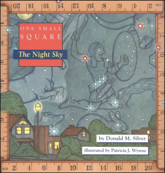 One Small Square: Night Sky