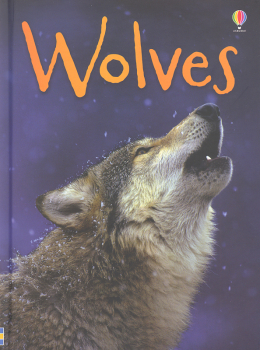 Wolves (Beginners Nature)