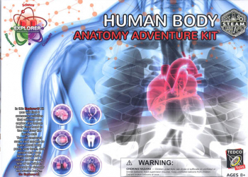 Human Body Anatomy Adventure Kit (Explorer-U)