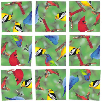 North American Birds Scramble Squares