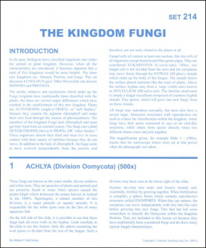 Kingdom: Fungi Microslide Lesson Set