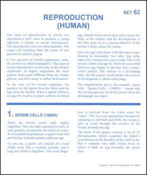 Reproduction (human) Microslide Lesson Set