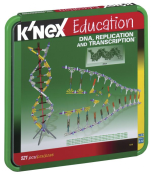DNA, Replication & Transcription Set (521 Pieces)