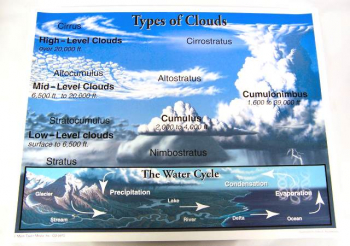 Types of Clouds Chartlet