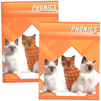 Plaid Phonics Homeschool Bundle Level D (2011 Edition)
