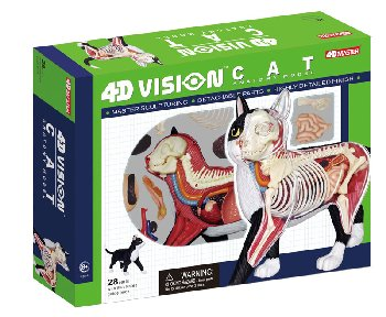4D Black and White Cat Anatomy Model