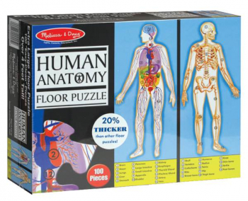 Human Anatomy Floor Puzzle (4 ft. tall)