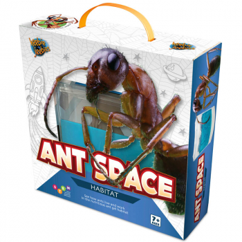 Ant Space Gel Colony