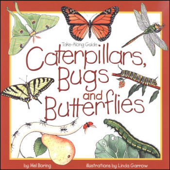 Caterpillars, Bugs and Butterflies (Take-Alon