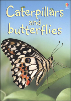 Caterpillars and Butterflies (Usborne Beginne