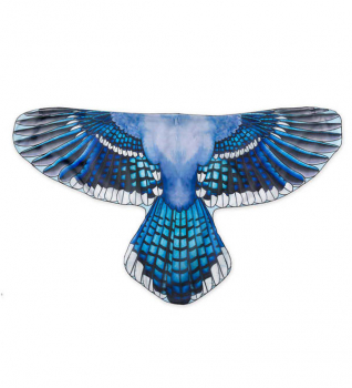 Brainy Bird Wings - Blue Jay