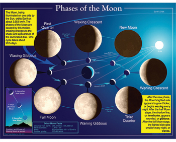 Phases of the Moon Chartlet