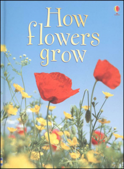 How Flowers Grow (Usborne Beginners)