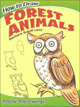 How to Draw Forest Animals