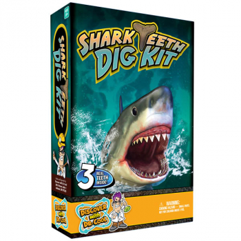 Shark Teeth Dig Kit (Excavation Kit)