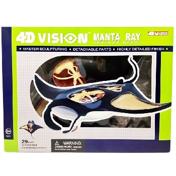 4D Vision Manta Ray Anatomy Model