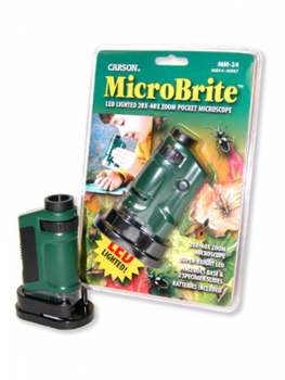Carson MicroBrite Pocket Microscope - Green