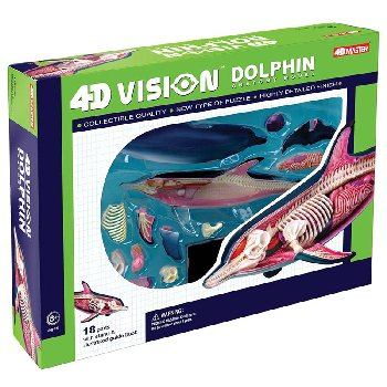4D Vision Dolphin Anatomy Model