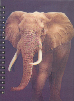 3D Lenticular Notebook: Elephant