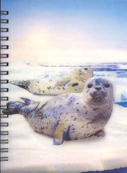 3D Lenticular Notebook: Harbor Seal