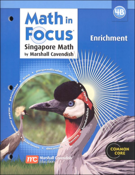 Math in Focus Grade 4 Enrichment B