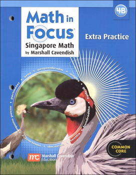 Math in Focus Grade 4 Extra Practice B