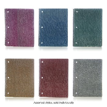 Lizard Glitter Theme Book (Assorted Color)