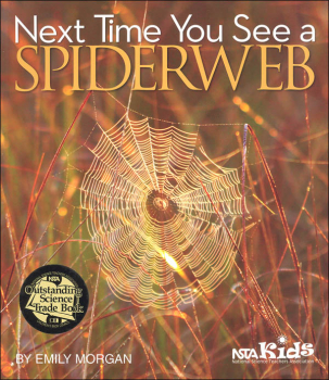 Next Time You See a Spiderweb