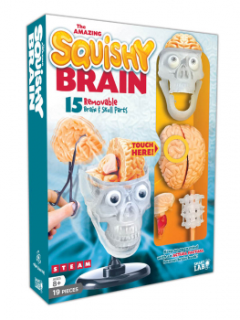 Squishy Brain