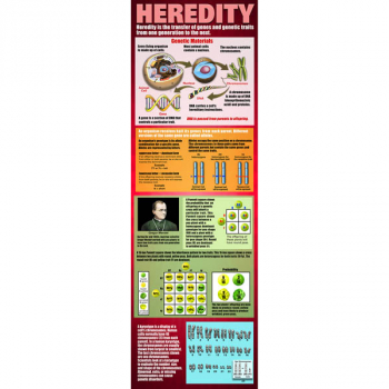 Heredity Colossal Poster