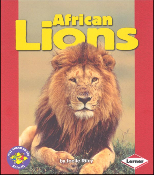 African Lions Book