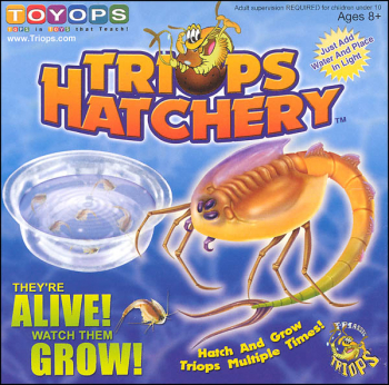 Triops Hatchery