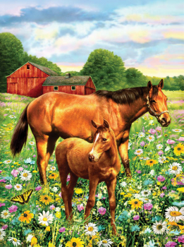 Painting By Numbers - Horse in Field (Junior Small)