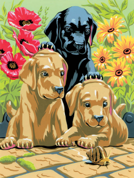 Painting By Numbers - Labrador Puppies (Junior Small)